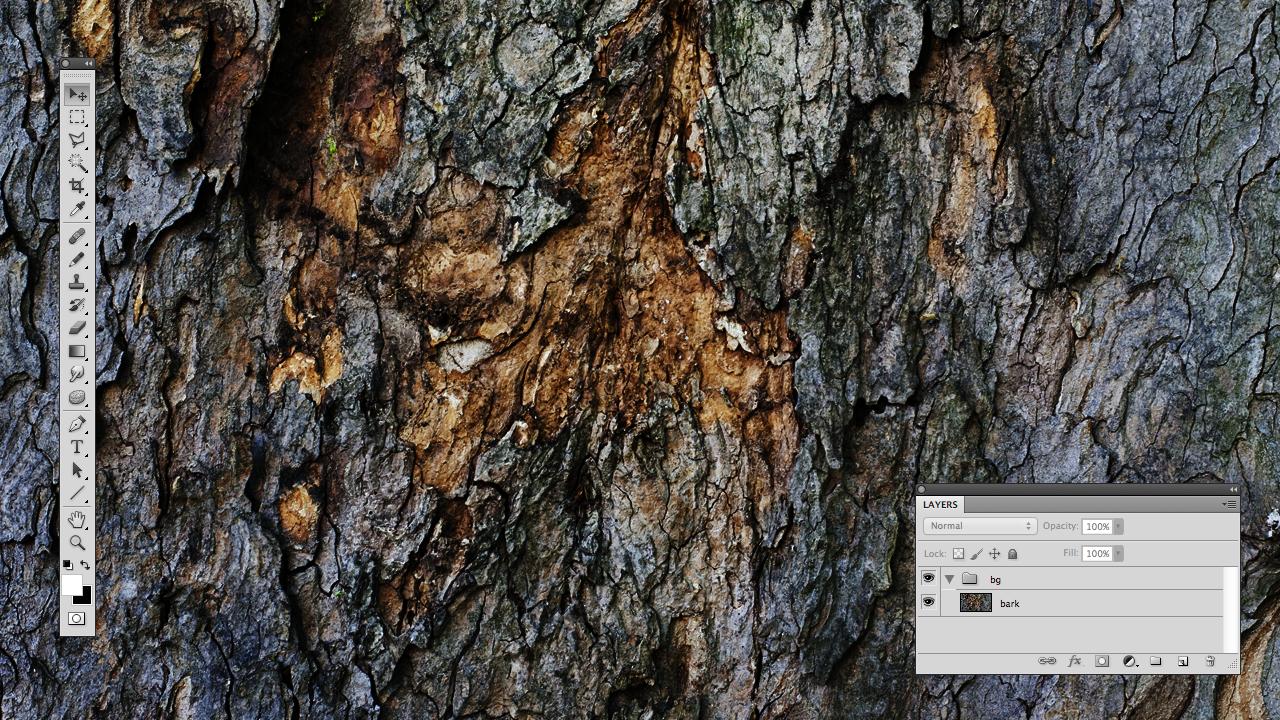 Open bark texture