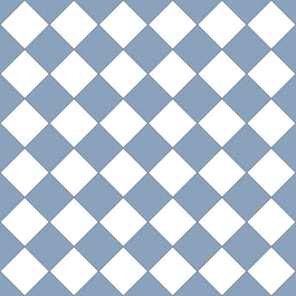 White / Blue checker