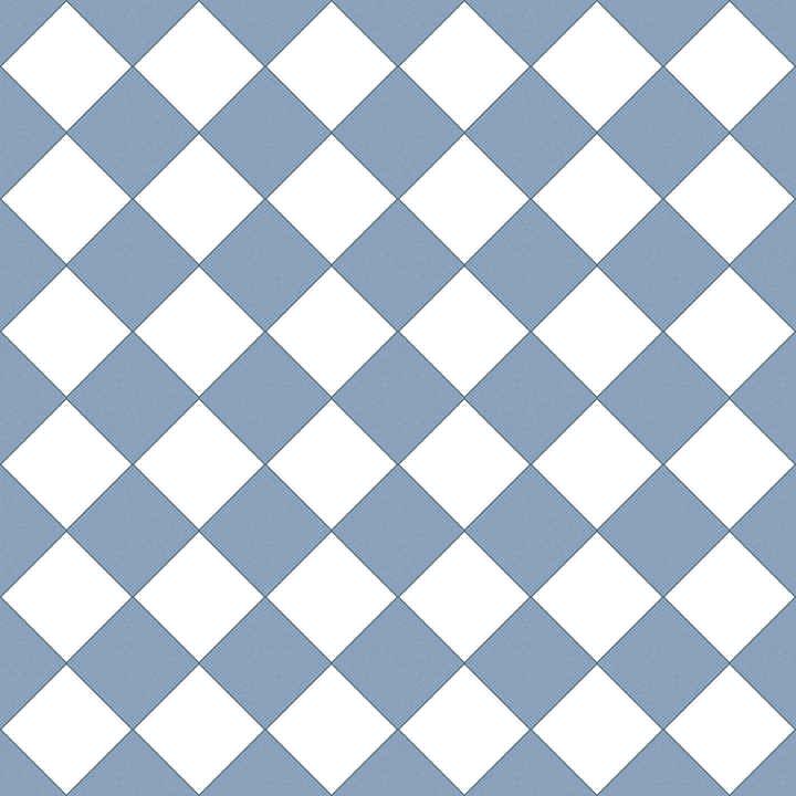 White / Blue checker