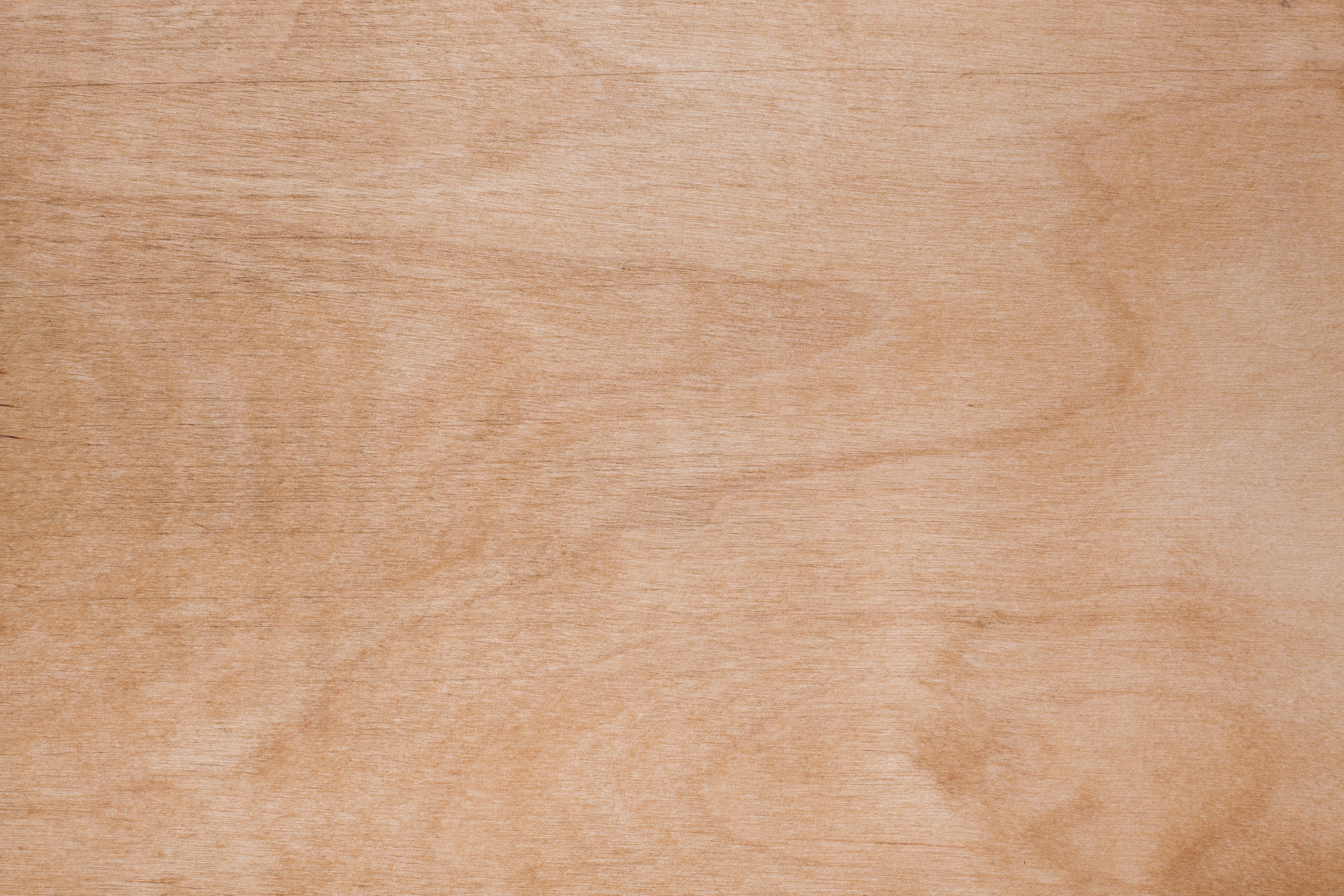 Clean Plywood Texture Wild Textures