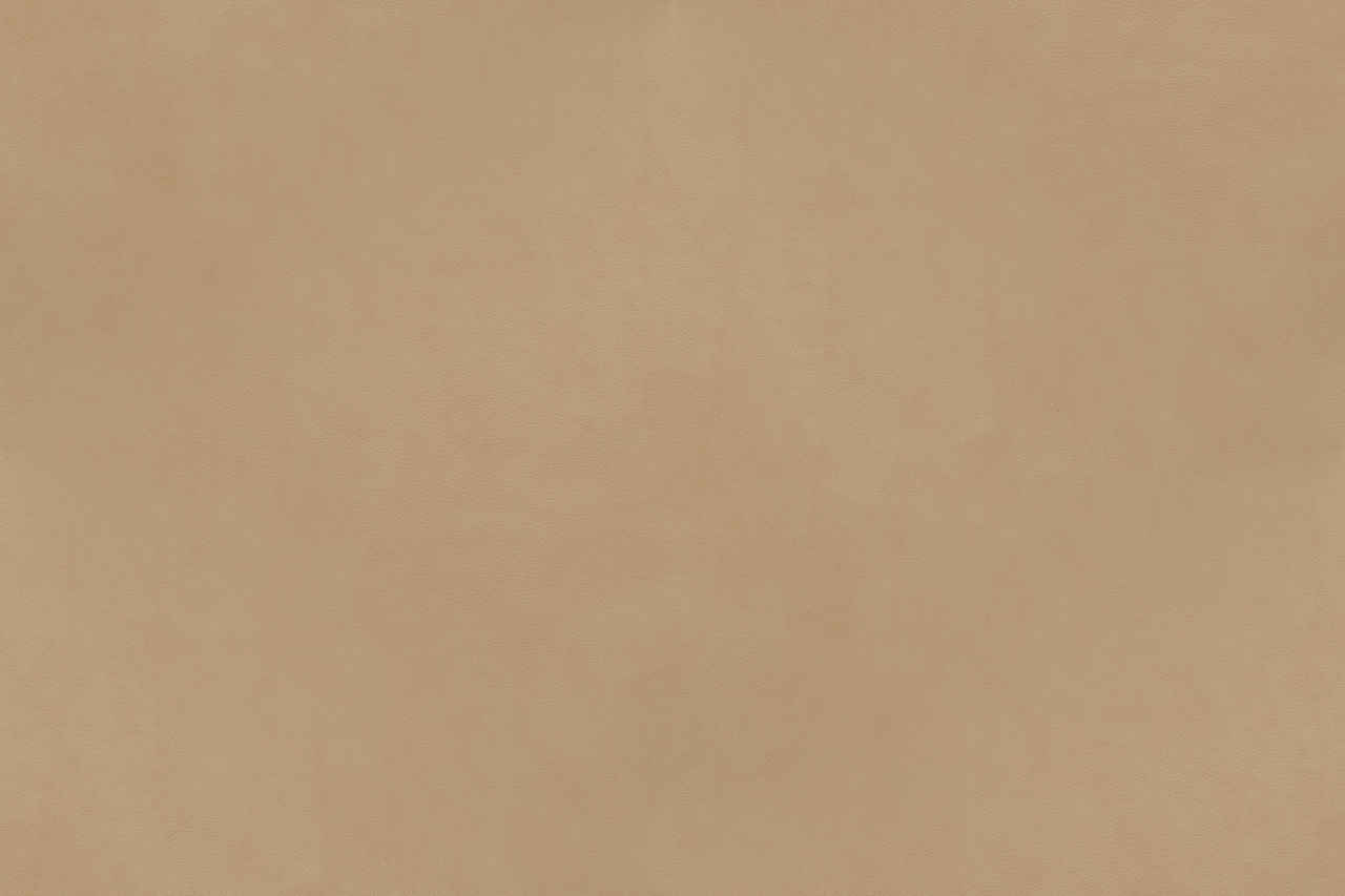 Terms Of Use >> Leather Texture – Campo Series – Beige