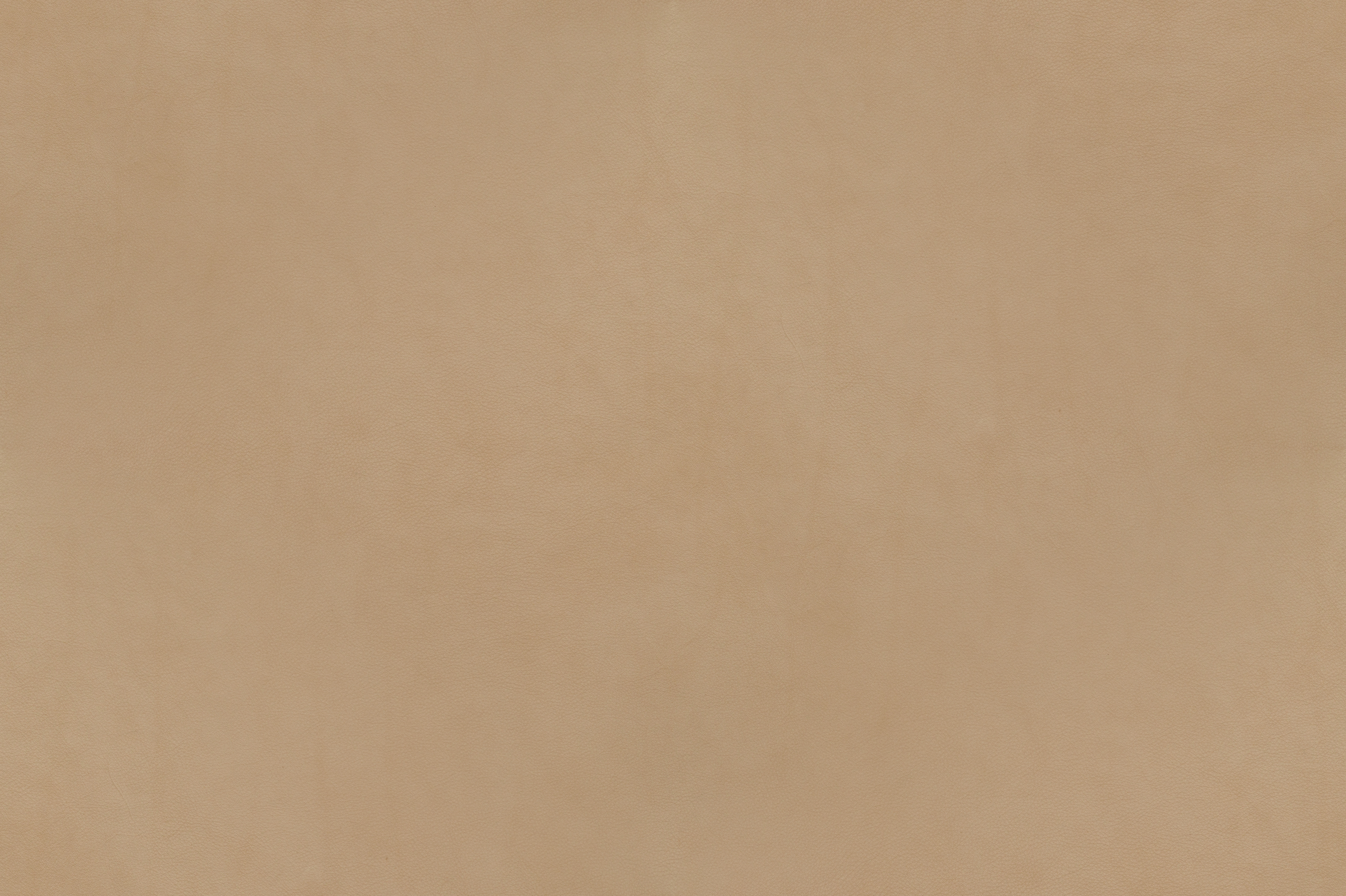 Living Room Wall Leather Texture Campo Series Beige