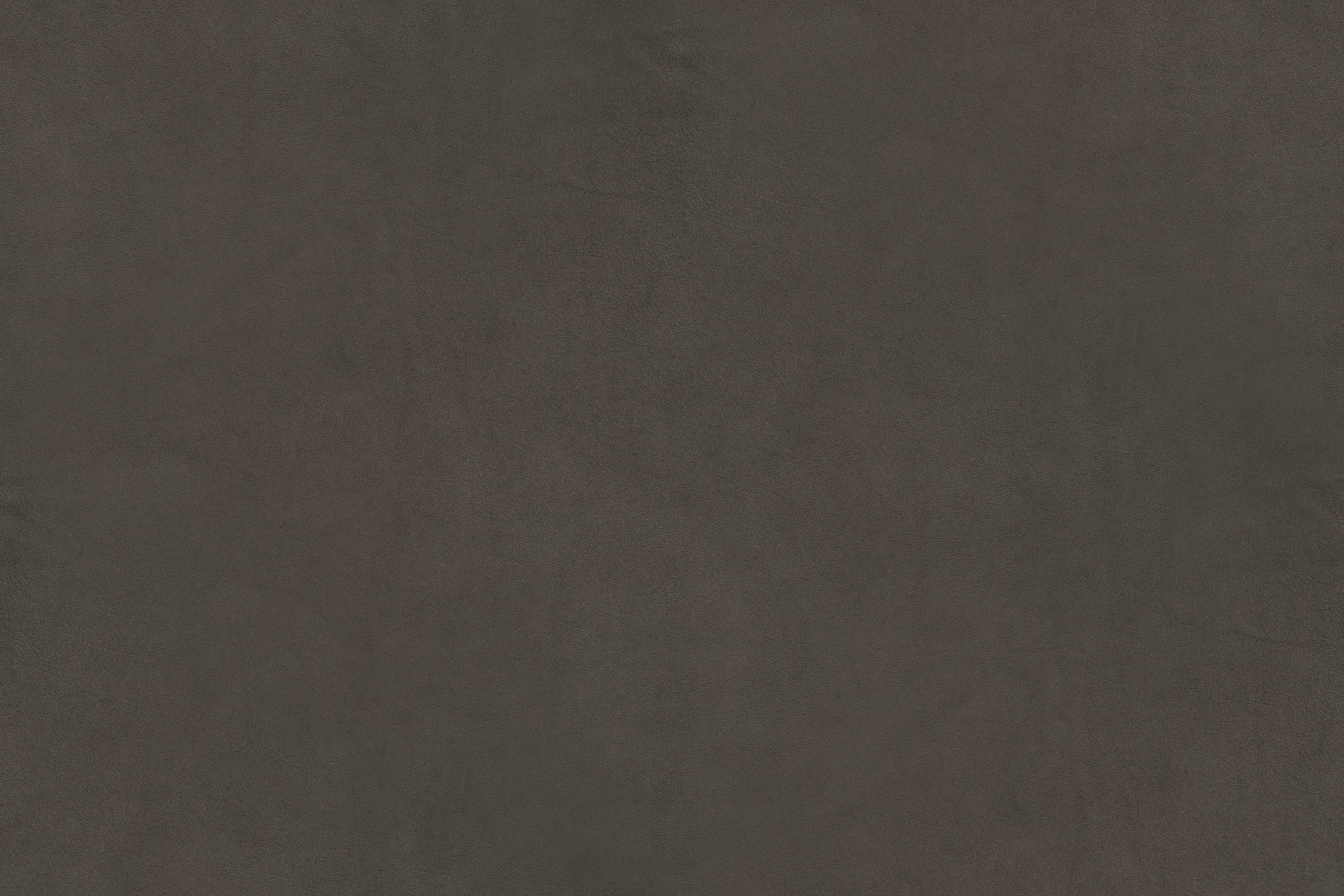 Leather Texture – Campo Series – Grey