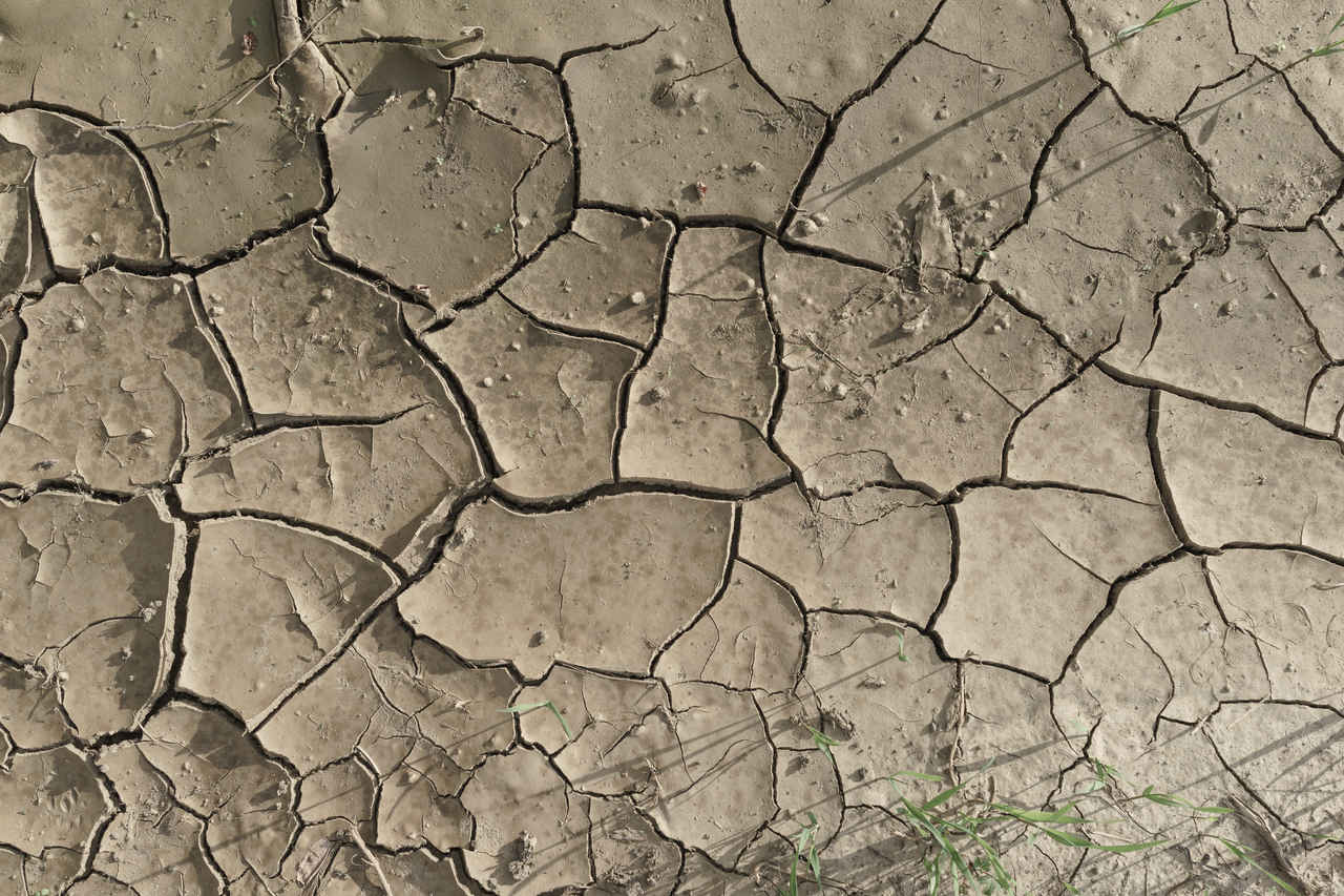Dried Cracked Mud Texture Iii